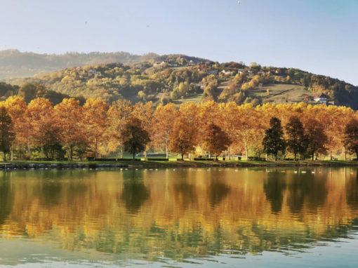 Stubenbergsee im Herbst (c) Martin Grabmayer